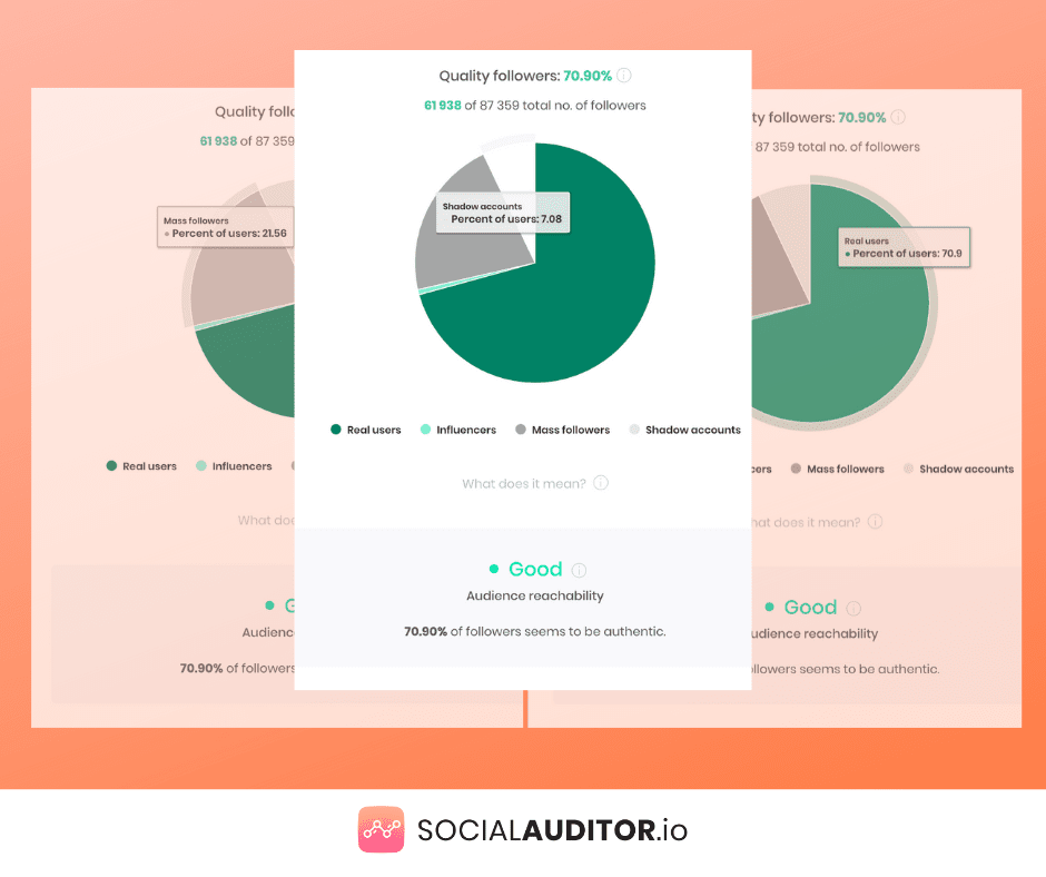 Social Auditor Chart Followers