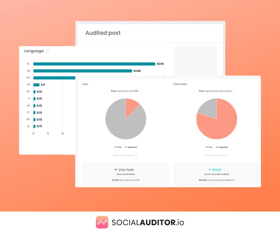 audyt postów instagram socialauditor